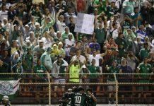 palmeiras-ituano-campeonato paulista